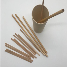 1-Stirrer & Straw